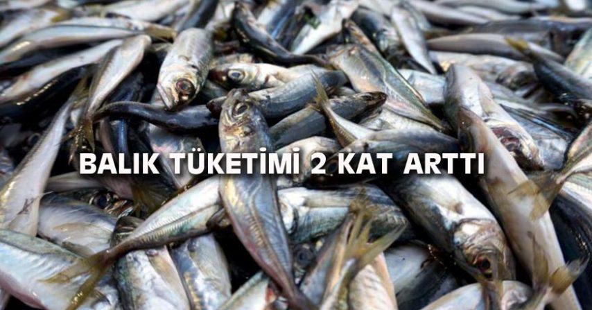 BALIK TÜKETİMİ 2 KAT ARTTI