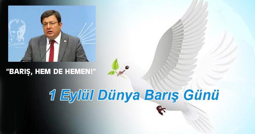 """CHP'Lİ ERKEK: """"BARIŞ, HEM DE HEMEN!"""""""