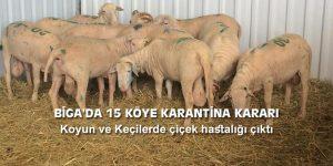 BİGA'DA 15 KÖYE KARANTİNA KARARI