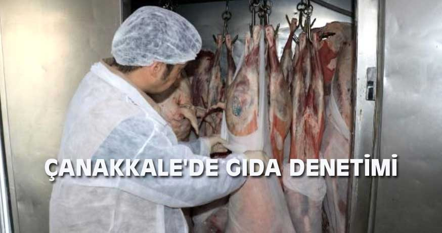 ÇANAKKALE'DE GIDA DENETİMİ