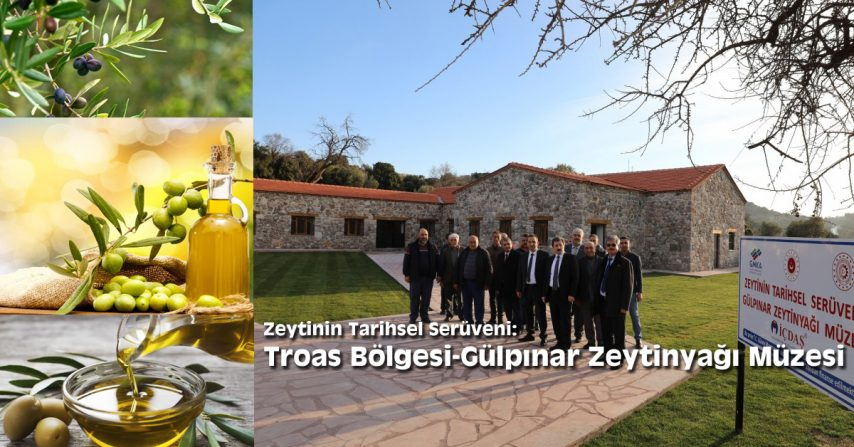 Troas Bölgesi-Gülpınar Zeytinyağı Müzesi